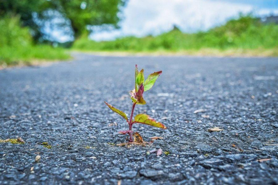 Glosario de términos relacionados con el asfalto (I)